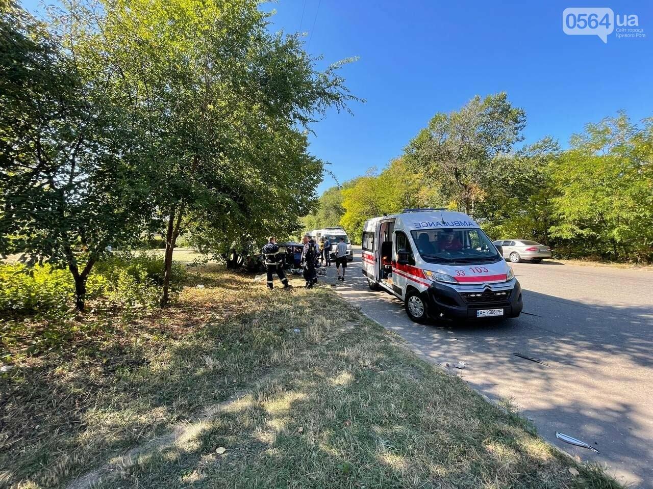 Два человека пострадали в аварии возле объездной дороги в Кривом Роге, - ФОТО, фото-4