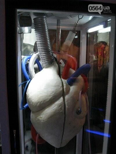 серце з сала