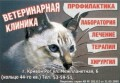 Ветеринарная клиника. ЧП Козлова Светлана Сергеевна