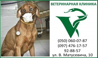 Логотип - Ветеринарная клиника, ветеринарная аптека  при цирке