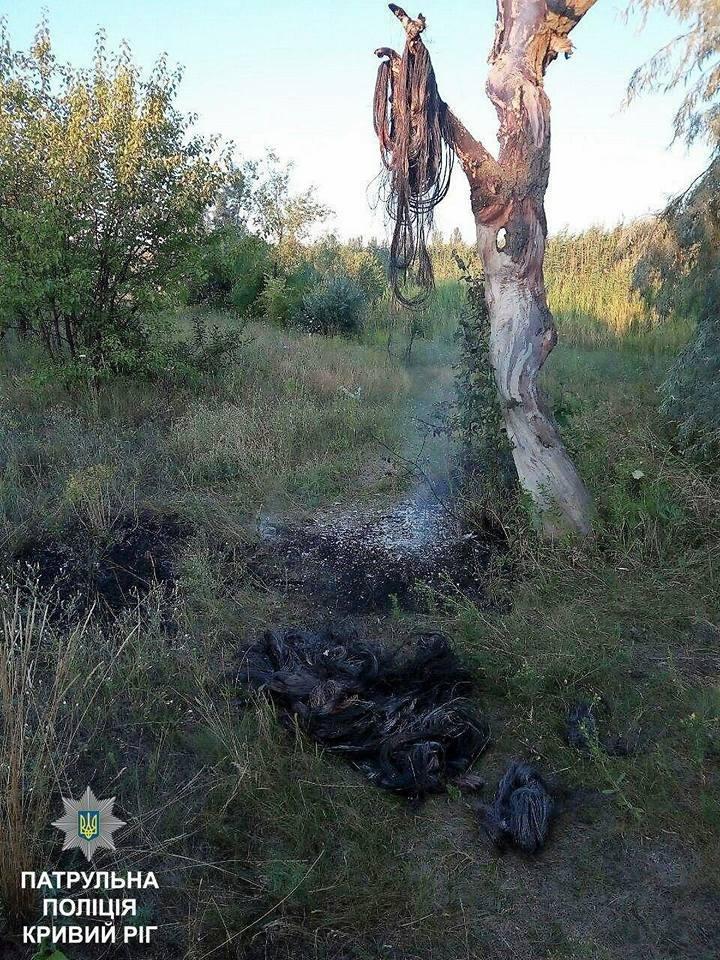Криворожские воры повесили медь на дерево и спрятались в камыш (ФОТО), фото-2