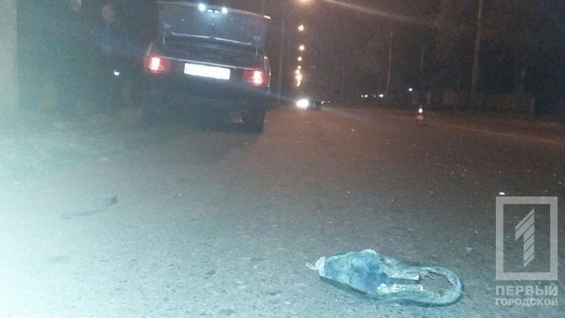 "В Кривом Роге подросток за рулем ""ВАЗа"" насмерть сбил пешехода (ФОТО 18+), фото-2"