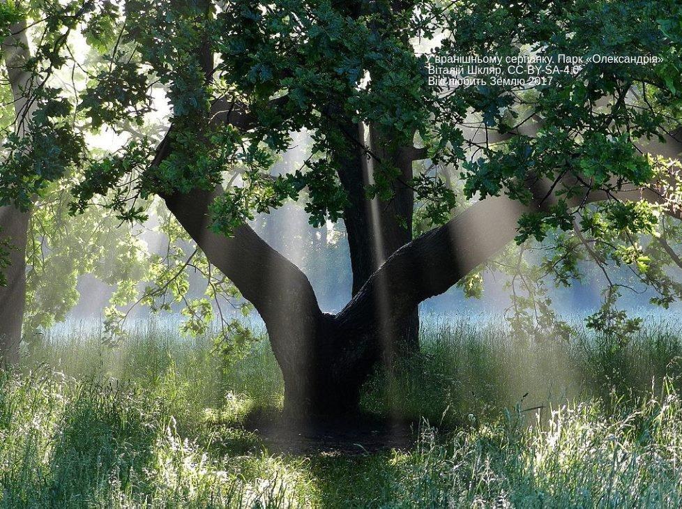 Лучшие фото украинской природы по версии Википедии, фото-20