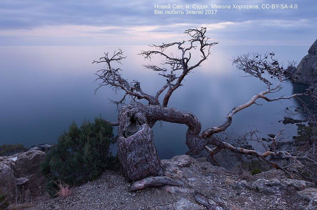 Лучшие фото украинской природы по версии Википедии, фото-21