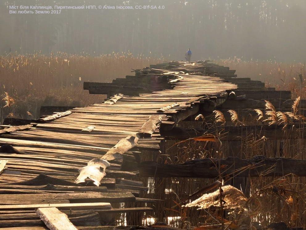 Лучшие фото украинской природы по версии Википедии, фото-4