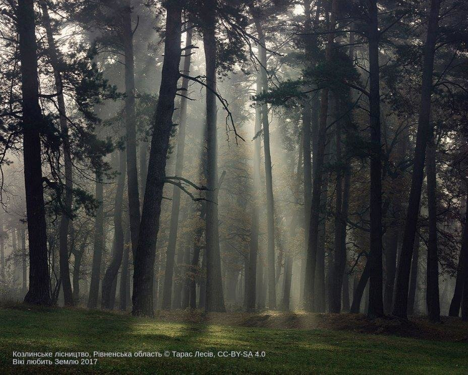 Лучшие фото украинской природы по версии Википедии, фото-3