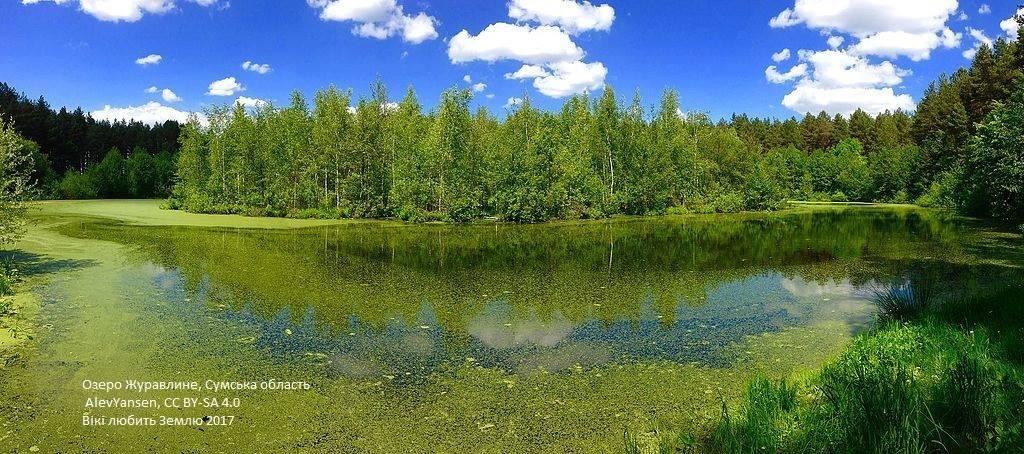 Лучшие фото украинской природы по версии Википедии, фото-24
