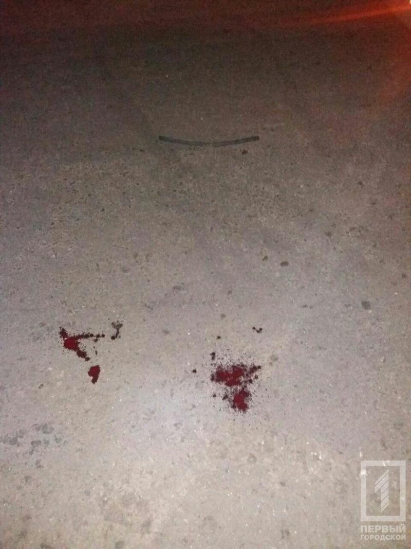 """ДТП в Кривом Роге: водитель """"ВАЗа"""" сбил пешехода (ФОТО 18+), фото-5"""