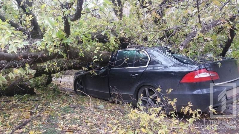 В Кривом Роге упавшее дерево смяло иномарку. Водитель вышел за мгновение до этого (ФОТО), фото-1