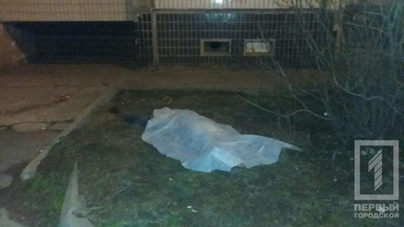 В Кривом Роге: родилось 13 малышей, женщина выпрыгнула из окна, голодный муж избил жену, фото-3