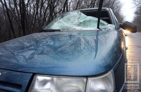 В результате ДТП в Кривом Роге сильно пострадал нетрезвый криворожанин  (ФОТО ), фото-3