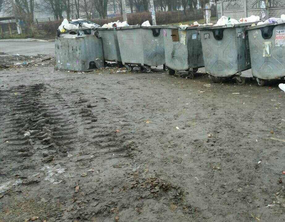 """В Кривом Роге начали проверять """"мусорники"""" (ФОТО), фото-4"""