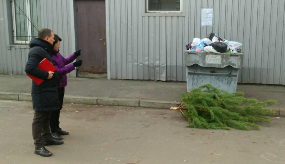 """После жалоб криворожан в соцсетях на грязные """"мусорники"""", их привели в порядок (ФОТО), фото-3"""