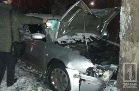 """В Кривом Роге  на скользкой дороге """"Skoda"""" влетела в дерево. Водитель не выжил (ФОТО), фото-2"""
