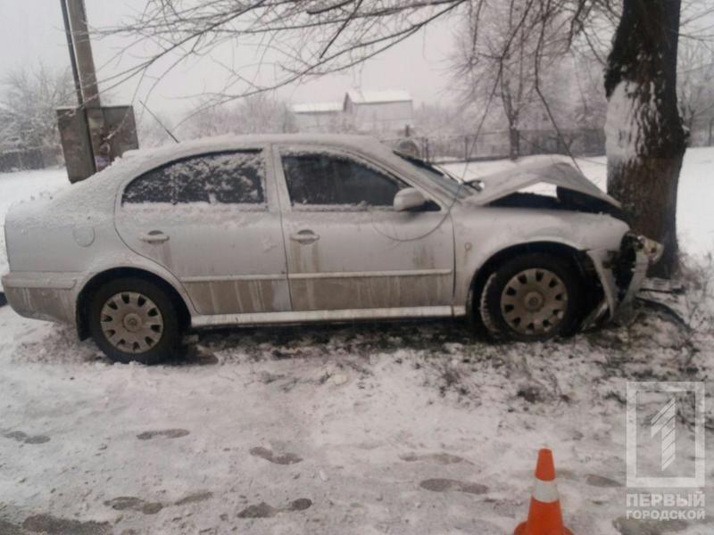 """В Кривом Роге  на скользкой дороге """"Skoda"""" влетела в дерево. Водитель не выжил (ФОТО), фото-1"""