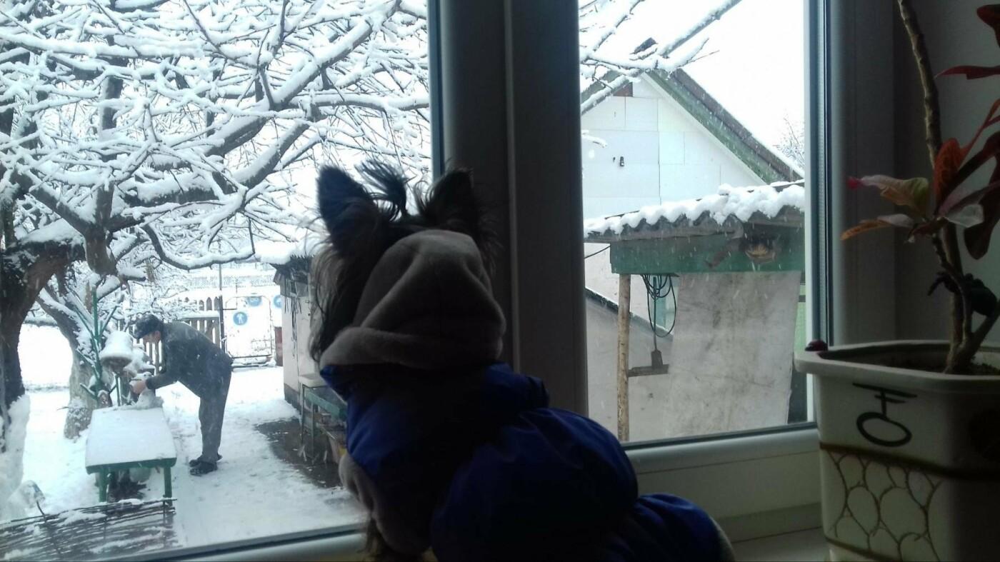Снежный флешмоб в Кривом Роге: Горожане вылепили огромного Почекуна и сотни снеговиков (ФОТО), фото-16