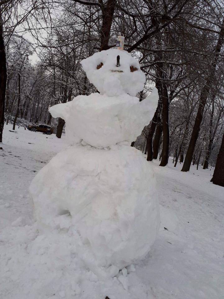 Снежный флешмоб в Кривом Роге: Горожане вылепили огромного Почекуна и сотни снеговиков (ФОТО), фото-4