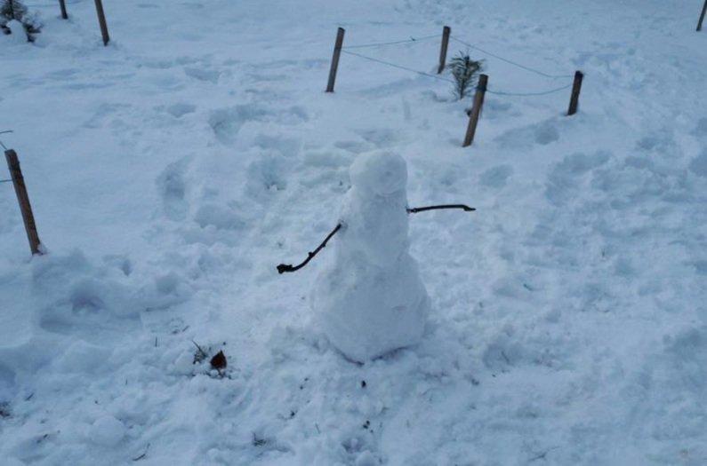 Снежный флешмоб в Кривом Роге: Горожане вылепили огромного Почекуна и сотни снеговиков (ФОТО), фото-5