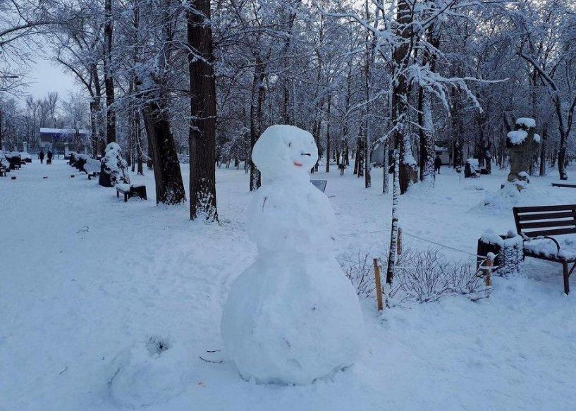 Снежный флешмоб в Кривом Роге: Горожане вылепили огромного Почекуна и сотни снеговиков (ФОТО), фото-8