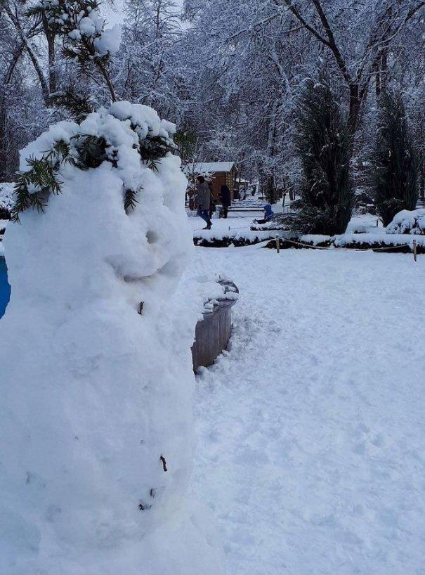 Снежный флешмоб в Кривом Роге: Горожане вылепили огромного Почекуна и сотни снеговиков (ФОТО), фото-7