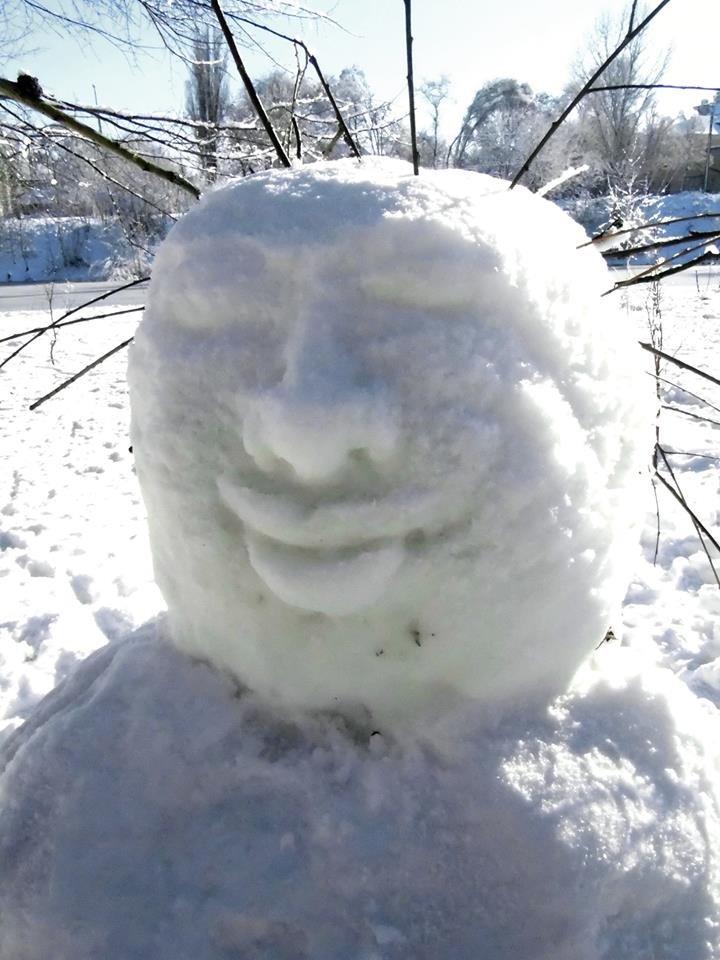 Снежный флешмоб в Кривом Роге: Горожане вылепили огромного Почекуна и сотни снеговиков (ФОТО), фото-11
