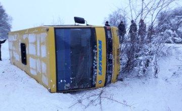 Под Кривым Рогом перевернулся автобус с пассажирами. Есть пострадавшие (ФОТО), фото-2