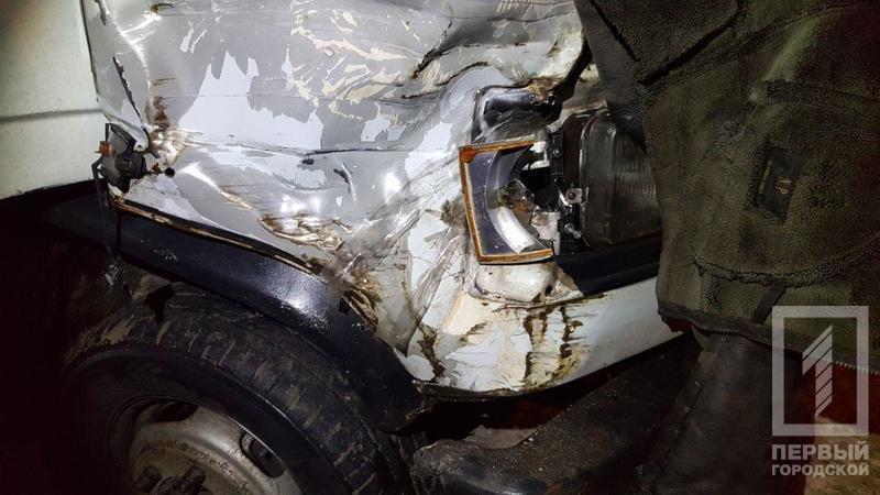 Под Кривым Рогом водитель насмерть сбил пенсионера и скрылся с места ДТП (ФОТО 18+), фото-1