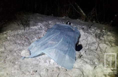 Под Кривым Рогом водитель насмерть сбил пенсионера и скрылся с места ДТП (ФОТО 18+), фото-3