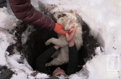 Криворожские журналисты спасли бездомную собаку, провалившуюся в колодец (ФОТО), фото-4