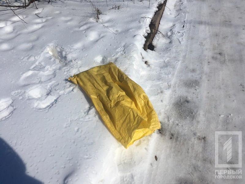 В КривомРоге возле заправки обнаружили мешок с миной (ФОТО), фото-1