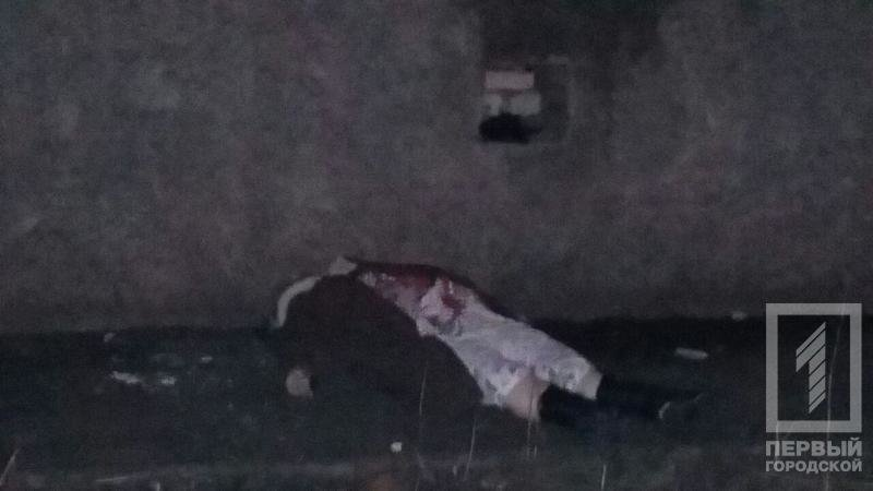 Трагедия в Кривом Роге: Из окна многоэтажки поздно вечером выпала женщина (ФОТО 18+), фото-5