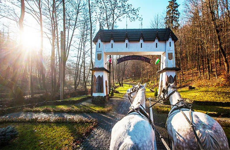 Невероятная Украина. Замки, вкусная еда и винные погреба Закарпатья (КАРТА, ФОТО, ЦЕНЫ), фото-39