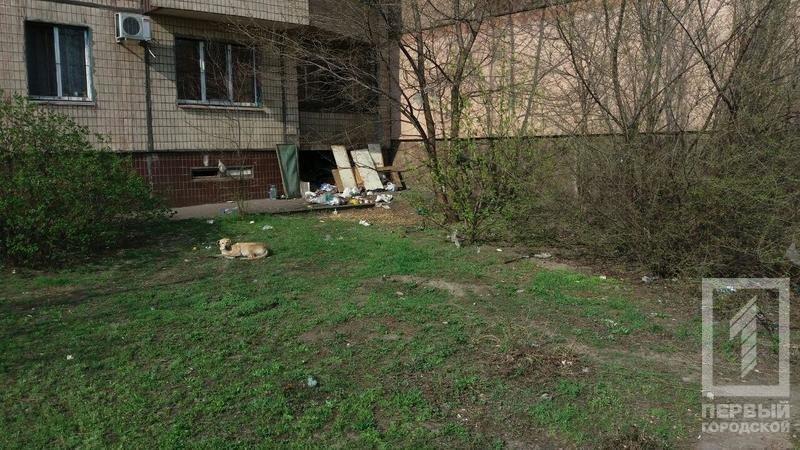 В Кривом Роге пьяные бездомные устроили поножовщину (ФОТО), фото-1