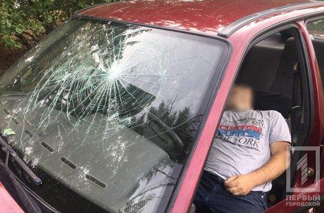 """Смертельное ДТП под Кривым Рогом: водителю """"Daewoo"""" стало плохо и он врезался в дерево, - ФОТО, фото-5"""