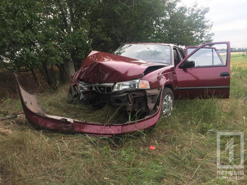 """Смертельное ДТП под Кривым Рогом: водителю """"Daewoo"""" стало плохо и он врезался в дерево, - ФОТО, фото-4"""