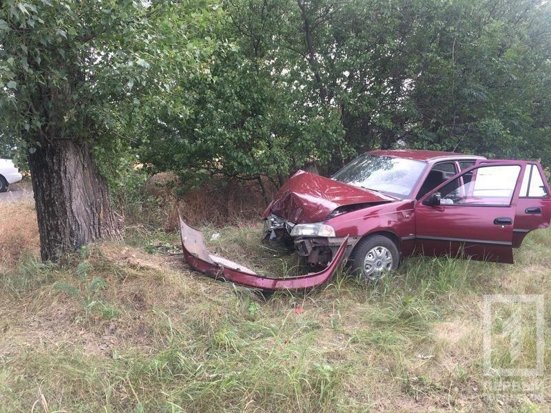"""Смертельное ДТП под Кривым Рогом: водителю """"Daewoo"""" стало плохо и он врезался в дерево, - ФОТО, фото-6"""