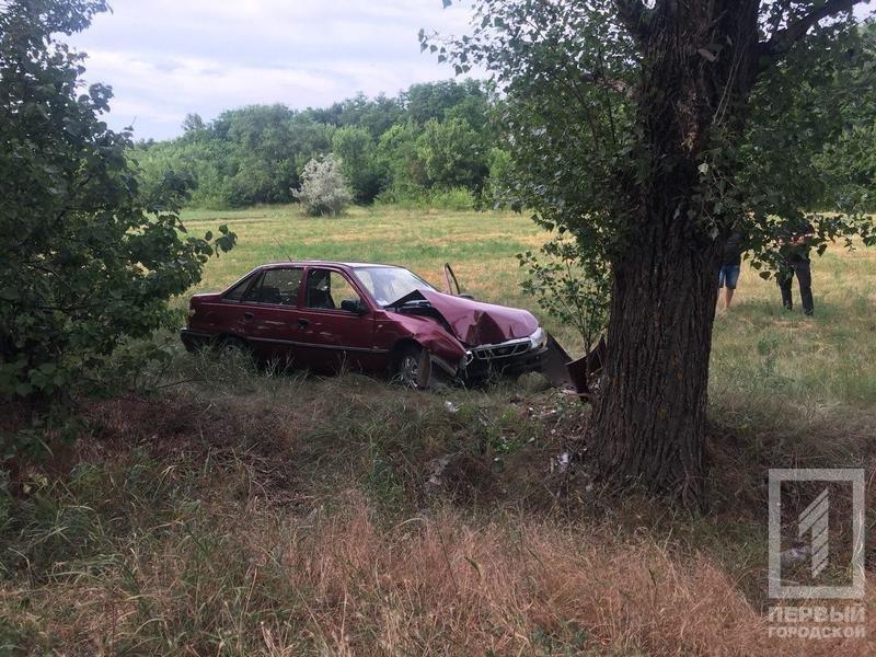 """Смертельное ДТП под Кривым Рогом: водителю """"Daewoo"""" стало плохо и он врезался в дерево, - ФОТО, фото-1"""