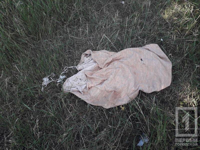 В Кривом Роге неизвестные выбросили в колодец мешок с живым псом, - ФОТО, фото-4