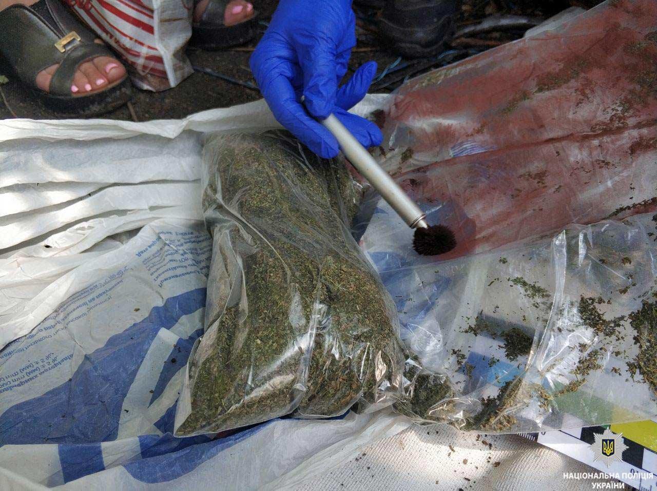 В гараже криворожанина полицейские обнаружили арсенал оружия и наркотики, - ФОТО, фото-1