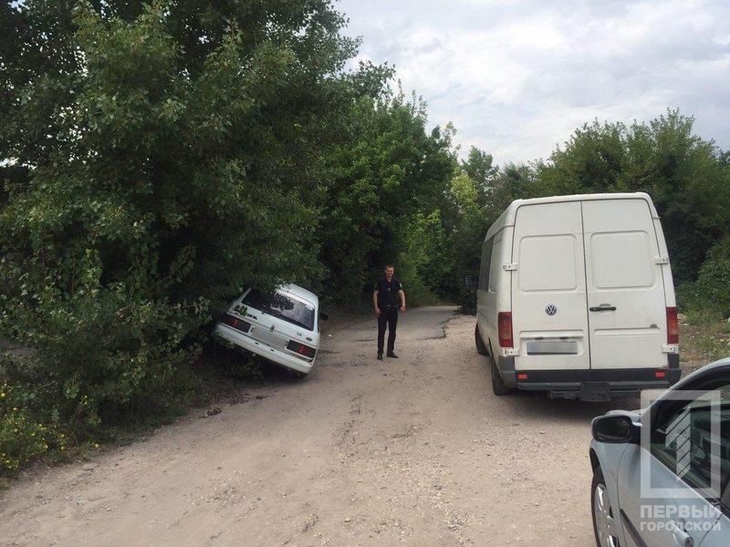 Пьяный криворожанин влетел в дерево, когда пытался скрыться с места ДТП, - ФОТО, фото-4
