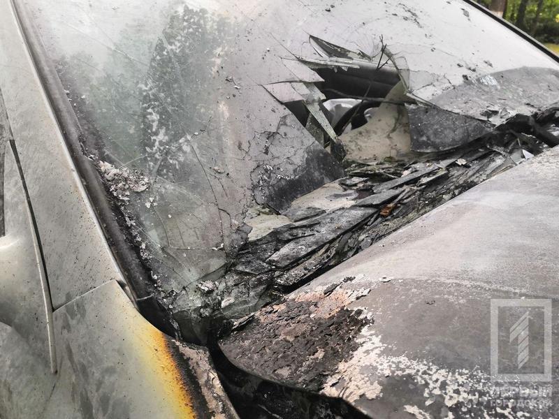 В Кривом Роге легковушка с детьми врезалась в дерево и загорелась, - ФОТО, фото-3