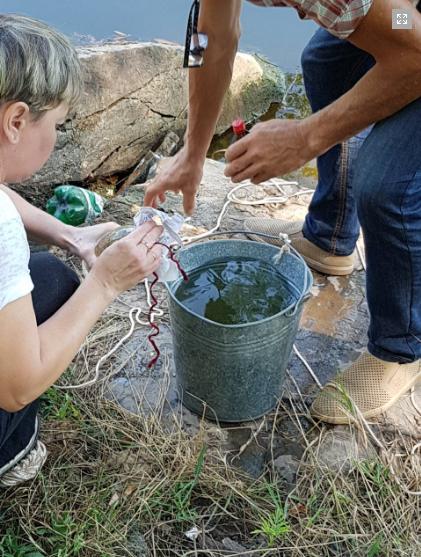 В Кривом Роге отобрали пробы воды из реки Саксагань для химического анализа, - ФОТО, фото-1
