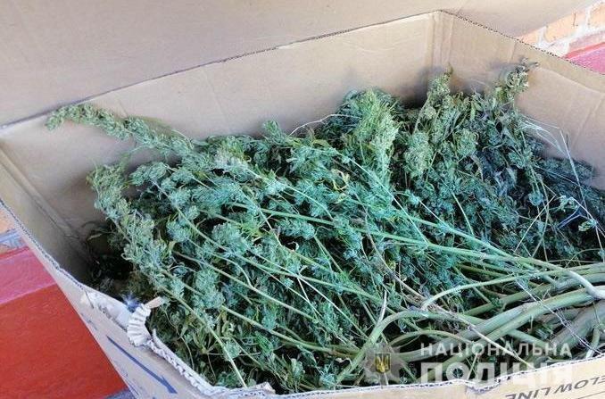 У криворожанина из дома вынесли наркотиков на 350 тысяч, - ФОТО , фото-3