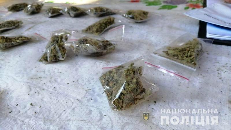 У криворожанина из дома вынесли наркотиков на 350 тысяч, - ФОТО , фото-1