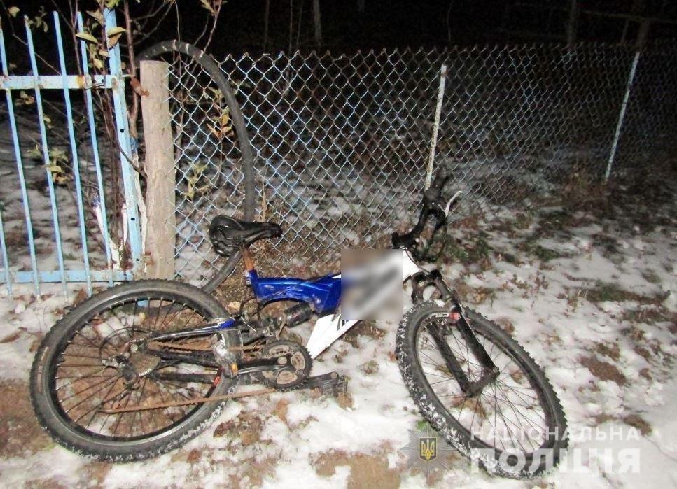 Односельчане поймали пьяного криворожанина, который жестоко избил старушку из-за велосипеда, фото-1
