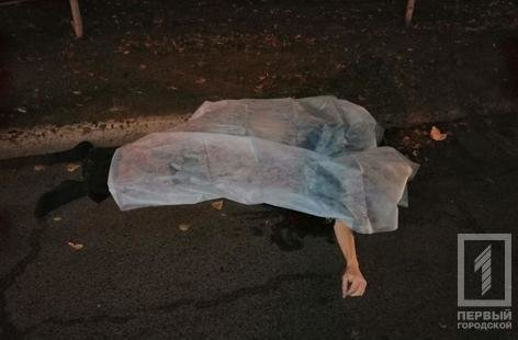 Смертельное ДТП в Кривом Роге: микроавтобус сбил мужчину, - ФОТО 18+, фото-5