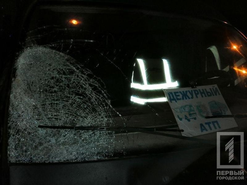 Смертельное ДТП в Кривом Роге: микроавтобус сбил мужчину, - ФОТО 18+, фото-3