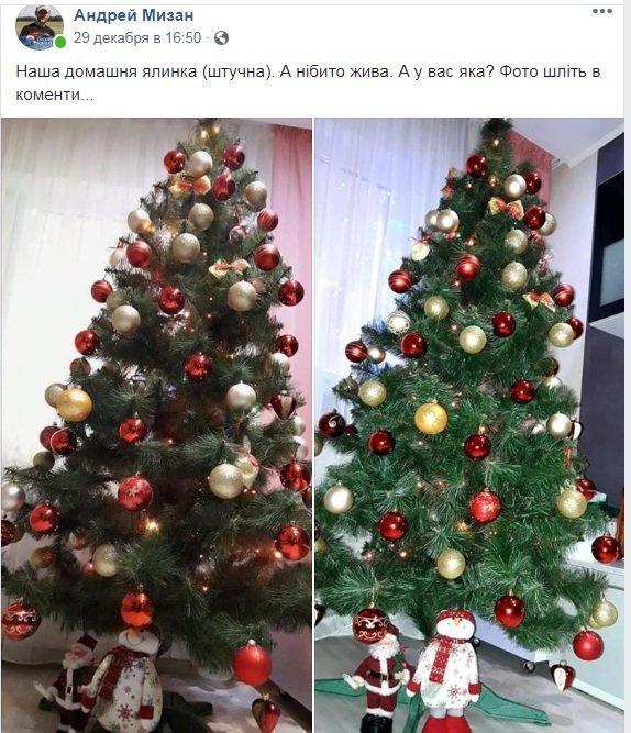 Новый год стучится в дверь: как криворожане дома украсили новогодние елки, - ФОТО , фото-1