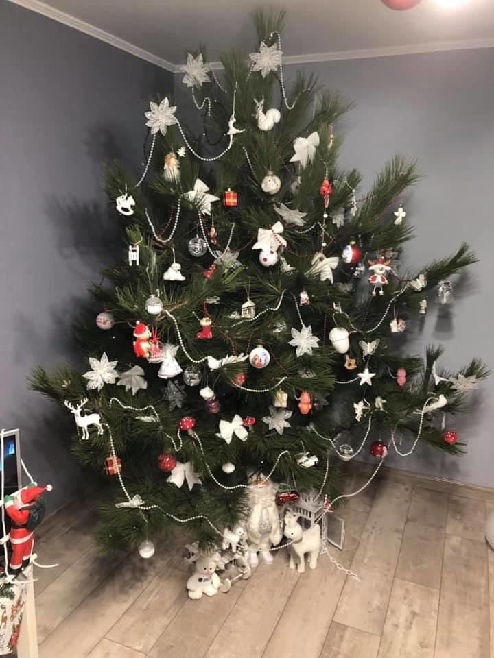 Новый год стучится в дверь: как криворожане дома украсили новогодние елки, - ФОТО , фото-2
