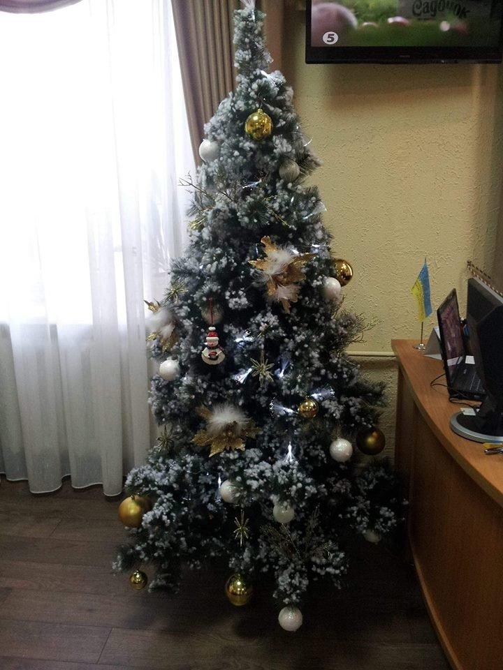 Новый год стучится в дверь: как криворожане дома украсили новогодние елки, - ФОТО , фото-3